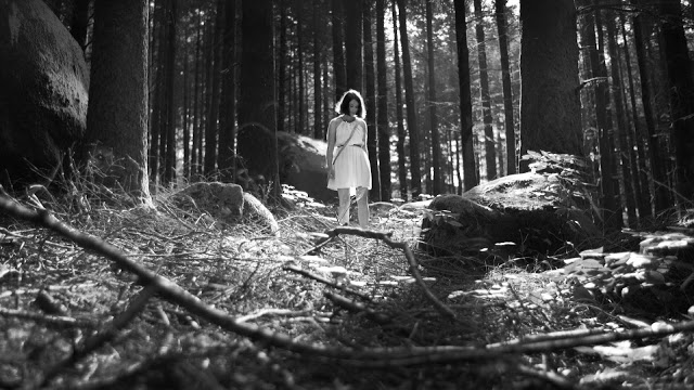 The Forest Of The Lost Souls Image