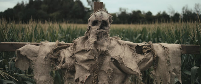 Scarecrows Image