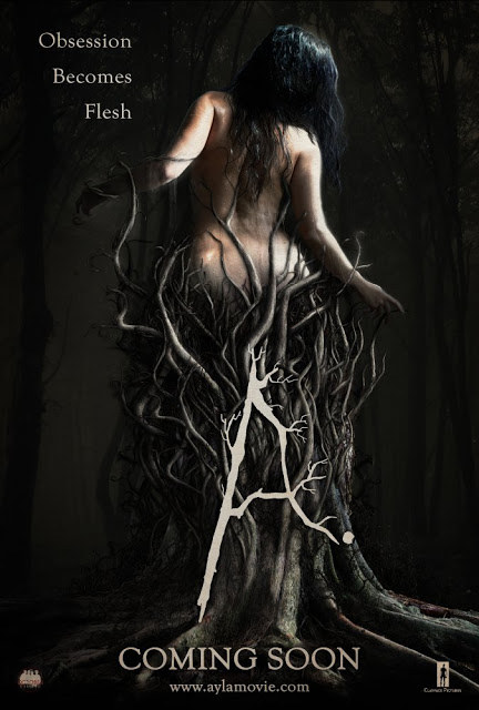 Ayla poster